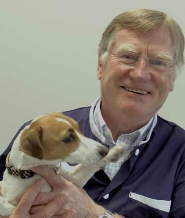 Veterinary Doctor Philippe MAYNARD