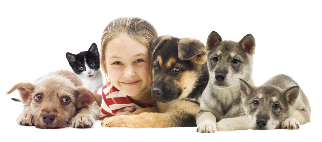 Child and set pets - Fotolia