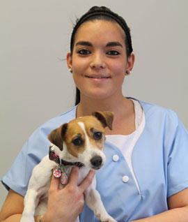 Specialist veterinary technicans Sophie
