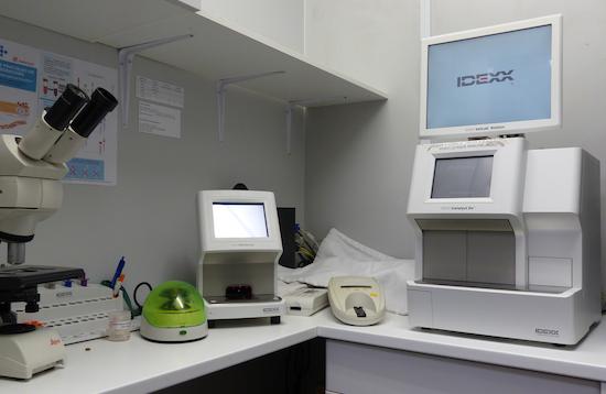 Examens sanguins et urinaires