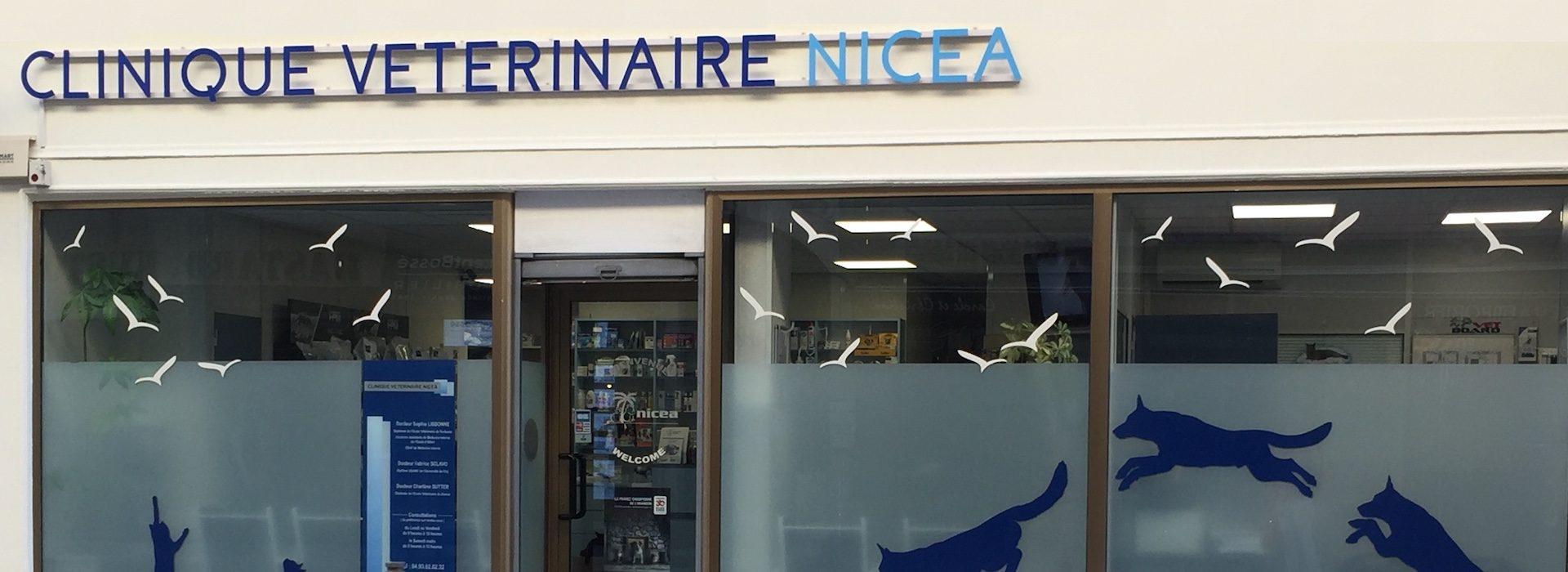Clinique Vétérinaire Nicea à nice